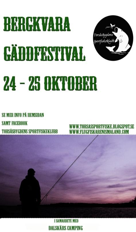 gaddfestival3