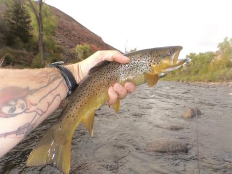 oring-eagle-river-oficiella-tranings-fisket