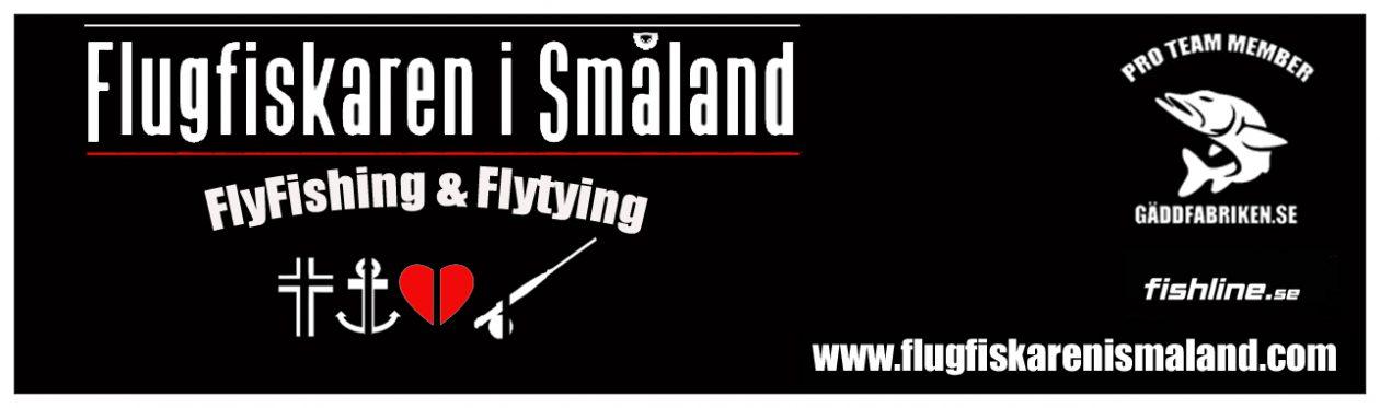 Flugfiskaren i Småland